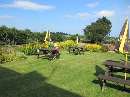 The Falcon Inn: The garden at the rear.