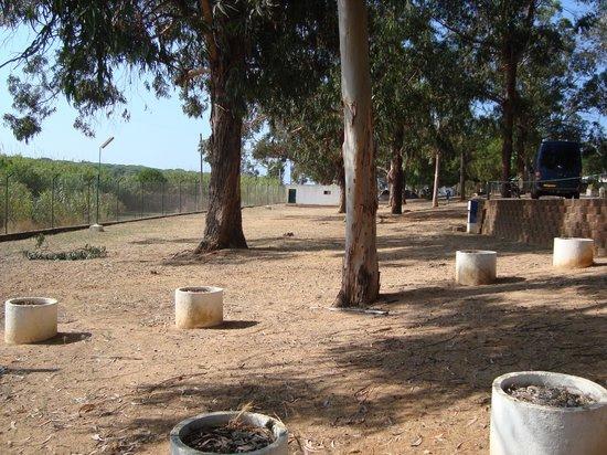 Camping Quarteira: Plenty of space near the farms