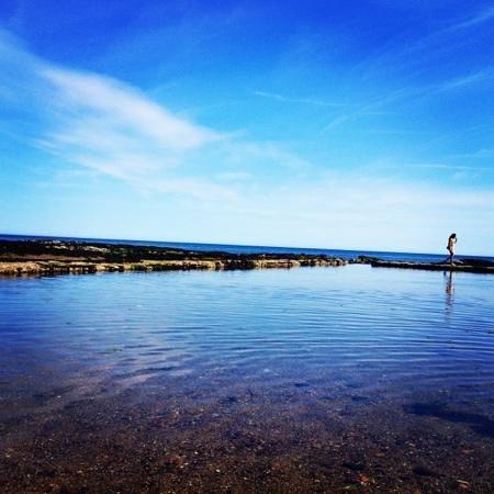 Infinity Pool Picture Of St Andrews Fife Tripadvisor