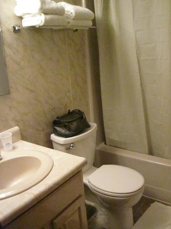 Americas Best Value Inn & Cottages : The Bathroom