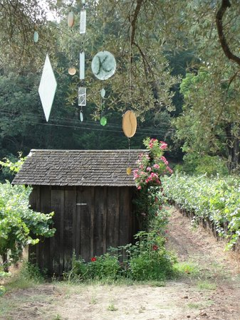 Tres Sabores Winery : Pretty Outbuilding/Flowers