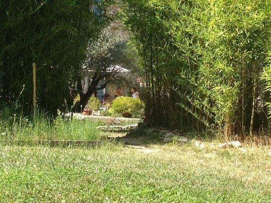 Le Moulin du Rossignol : Vue du parc, face Moulin