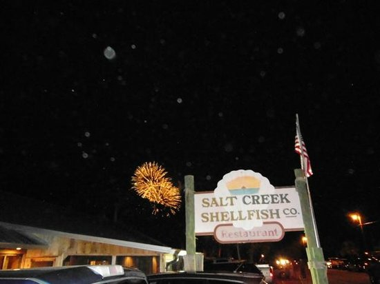 Suwannee, FL: July Fireworks at Salt Creek