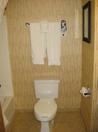 Holiday Inn Express Gillette: Very noisy toilet!