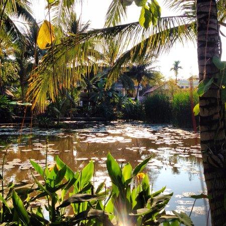 Maison Dalabua Hotel: Vista do lago na entrada do hotel