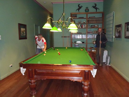 MONA Country Manor House: Pool sharks