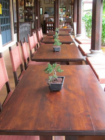 Sibu Chocolate All Their Furniture Is Handmade With Local Cypress