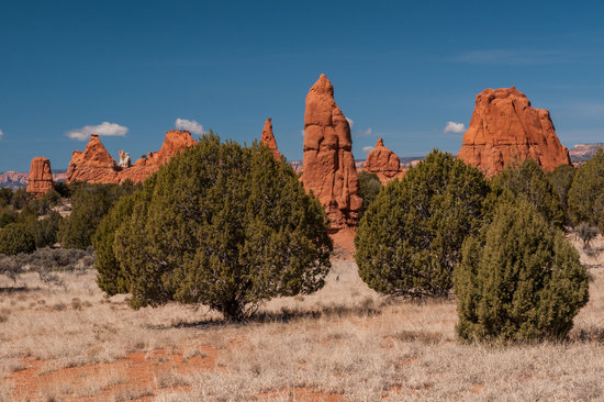 Kodachrome Basin State Park: More Red Rock, Blue Sky & Evergreens