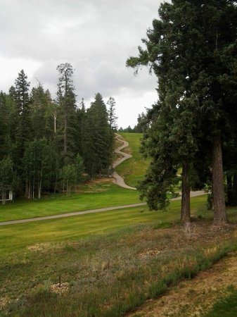 The Lodge Resort and Spa: Golf at the Lodge