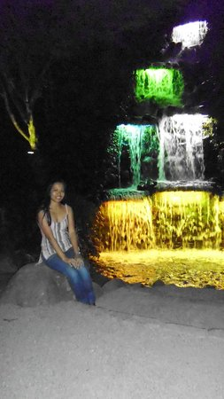Taman Pukekura: this is the colorfull falls at xmas time in pukekura park!!
