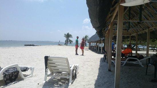 Hotel Isla Arena Plaza : playa del hotel