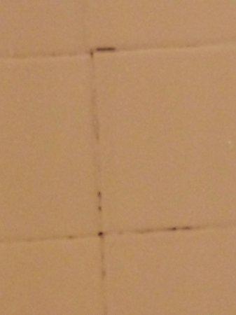 Mt. Olympus Resort: Just a sample of the dirt and grime left on the shower walls.