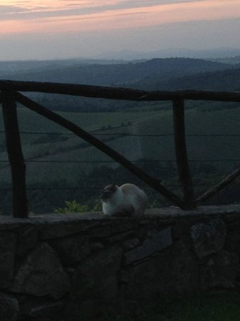Romitorio di Serelle : Sunset and our friend !