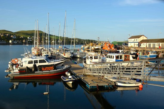 The Ugadale Hotel & Cottages: Cambelltown boat harbor