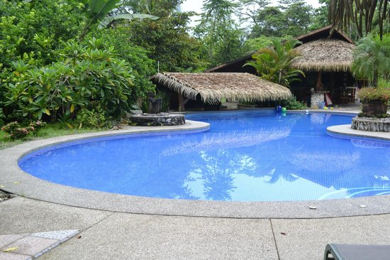 Suizo Loco Lodge Hotel & Resort: gorgeous pool and swim up bar