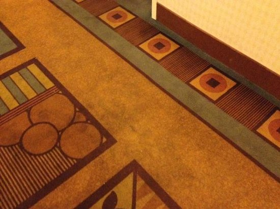 DoubleTree by Hilton Las Vegas Airport : Carpet stains outside my room