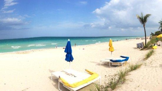 Sea View Hotel: Beach view