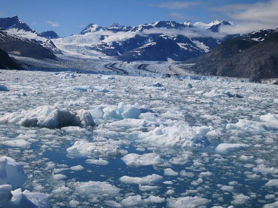 Lu Lu Belle Tours: We were only  a mile and a half from the glacier.