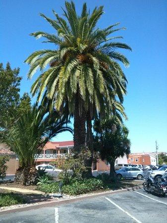 Best Western Plus El Rancho Inn: Terrace Cafe