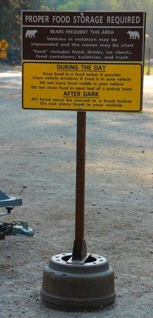 Camp 4 : Warning signs