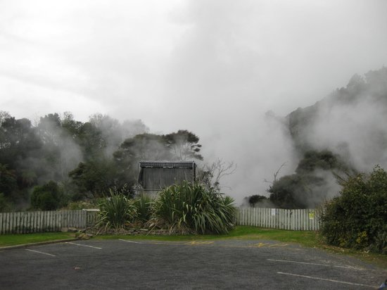 Waikite Valley Thermal Pools : Steam rising