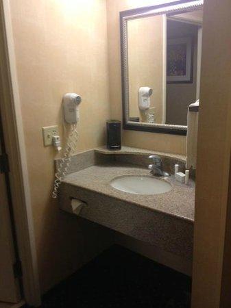 Albany Courtyard by Marriott: Bathroom