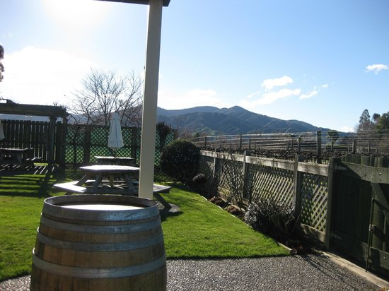 Saint Clair Family Estate Vineyard Kitchen : Vines and outdoor area