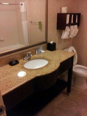 Hampton Inn Rock Hill: bathroom