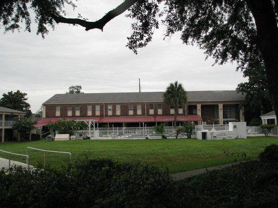 Motel 6 Ocala Conference Center: Main building, pool and grounds