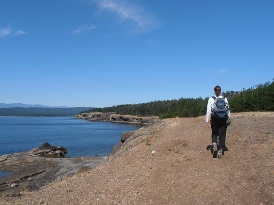Ocean to Alpine Adventure Lodge: Hornby Island