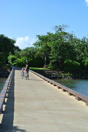 Four Seasons Resort Mauritius at Anahita : Bridge