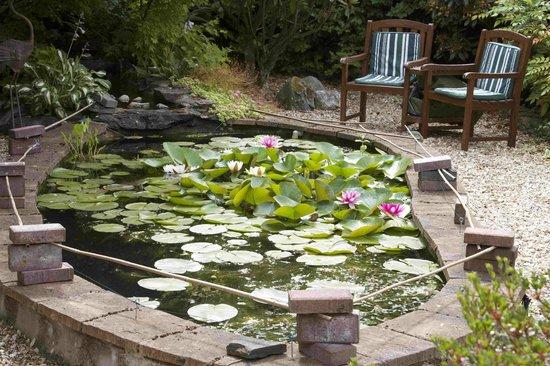 Kilronan House: Garden Lily Pond