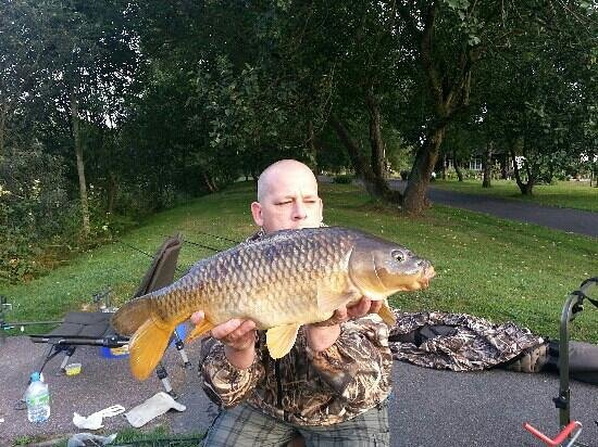 Aberaeron, UK: one of many carp