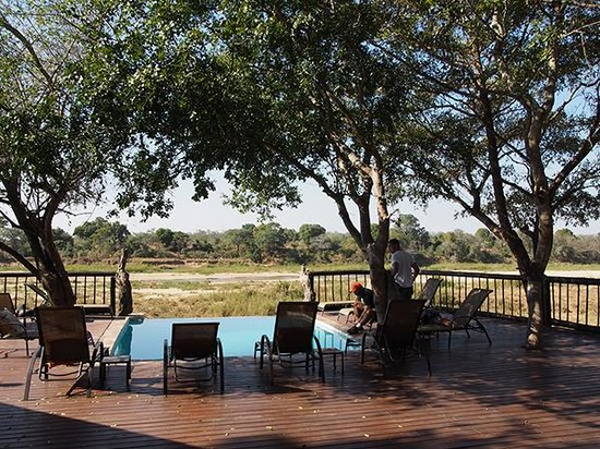 Umkumbe Safari Lodge: The plunge pool and river view.