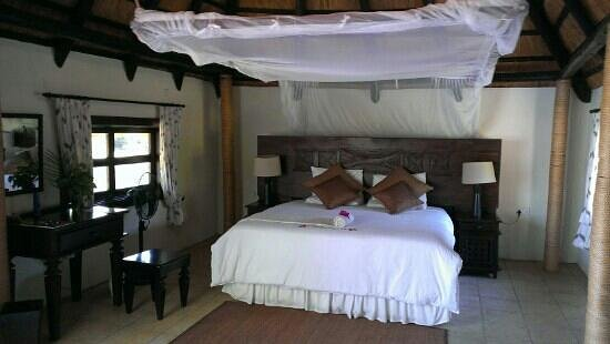Thorntree River Lodge : Lodge 9 - right next to hippo highway!