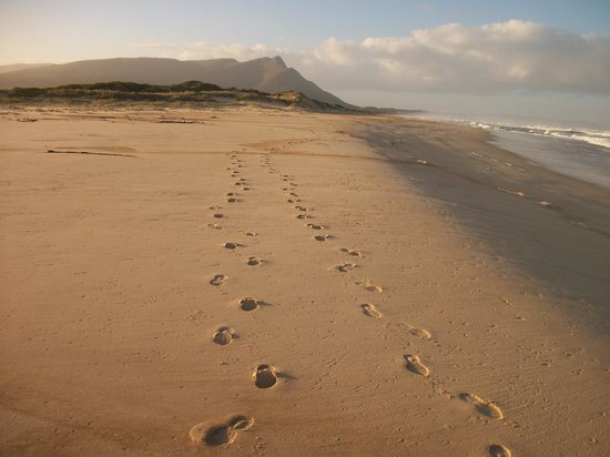 Flamingo Lake Self Catering : Footprints in the sand