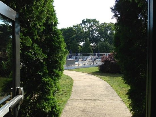 Mariner Motor Lodge : Leading out to in ground pool