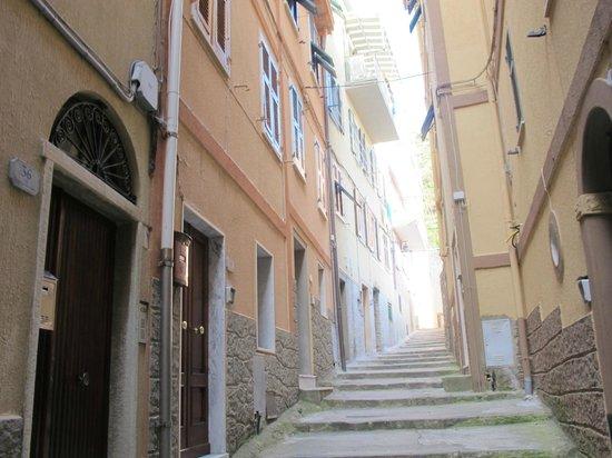 Casa Capellini - Rooms and Apartments : the pathway to casa capelini