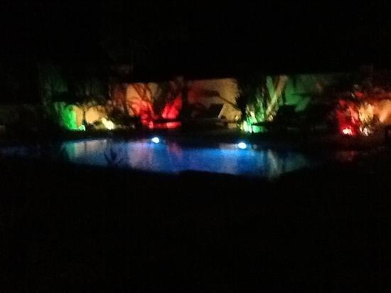 Botanica Guest House: piscine éclairée debnuit