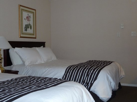 Sandman Hotel Penticton : Comfy beds, pillows and duvets
