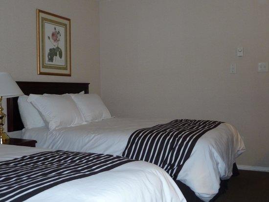 ساندمان هوتل بينتيكتون: Comfy beds, pillows and duvets
