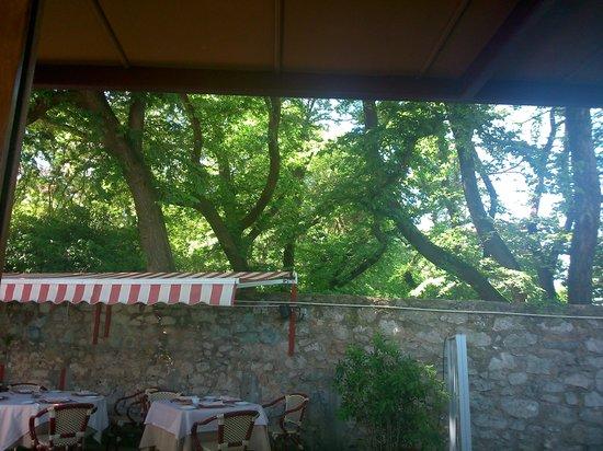 Restaurante Los Infantes Gourmet : vista desde el comedor