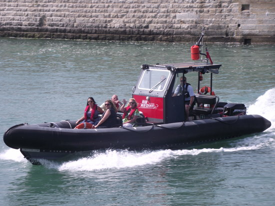 Rib Request - Day Tours: Off to see the Seals