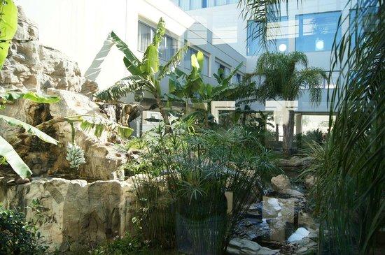 Atrium Platinum Hotel: зимний садик