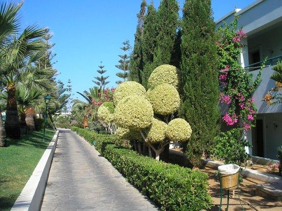 Eldorador Creta Marine : Le jardin