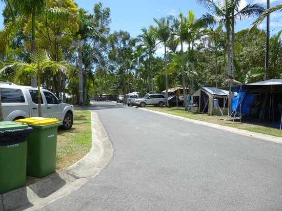 Noosa Caravan Park: Tents and Campervans
