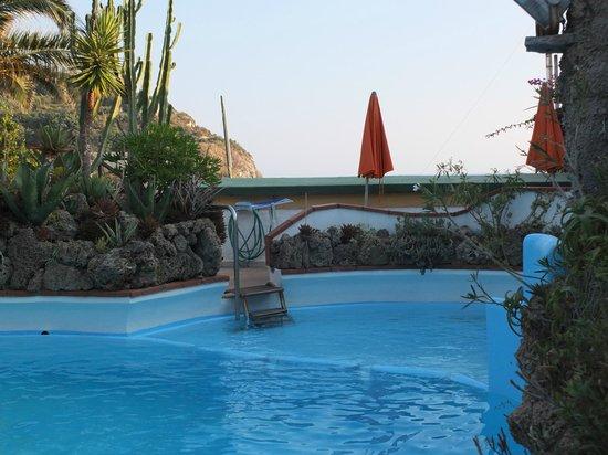 Hotel Villa Sirena: piscina con vista mare