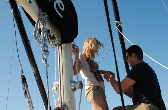 Key Sailing: Proposal