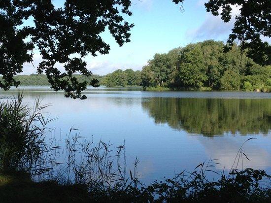 Au Relais du Gue de Selle: Vue du lac