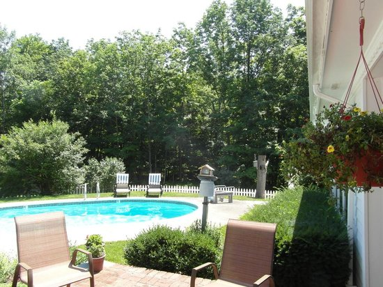 Wooden Duck B&B: Photo of the pool